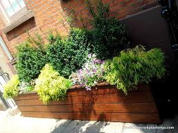Herb Garden Planters by Planter Lined Walkway Google Search Dream Home Pinterest