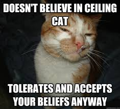 Ceiling Cat Meme - doesn t believe in ceiling cat tolerates and accepts your beliefs