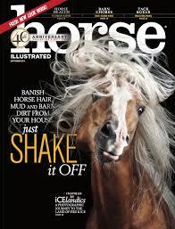 ferrari horse vs mustang horse experience u0026 education u2014 joyce bautista ferrari