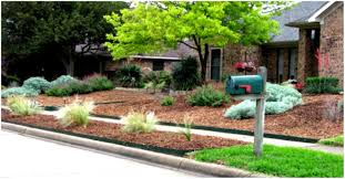 small front yard landscaping ideas low maintenance garden trends
