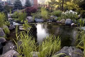 koi pond design landscape traditional with backyard pond fish pond