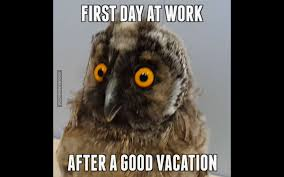 Back To Work Meme - first day at work after a good vacation youtube
