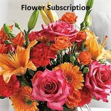 monthly flower delivery olive branch ms flower delivery the yellow florist