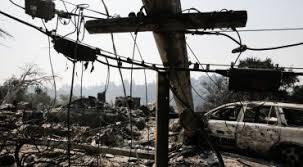 pg u0026e plans to cut 25 000 fire damaged trees fox40