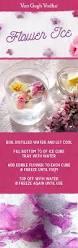 55 best van gogh acai blueberry vodka images on pinterest