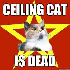 Ceiling Cat Meme - ceiling cat is dead cat meme cat planet cat planet