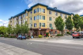 Stream Belmont Apartments Seattle by 100 Best Apartments In Seattle Wa With Pictures P 3