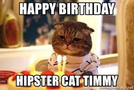 Hipster Cat Meme - hipster cat meme generator cat best of the funny meme