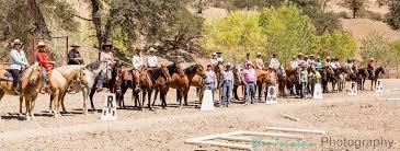 how to start cowboy dressage in your area u2013 cowboy dressage world