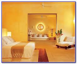 popular gold paint colors home design u0026 architecture cilif com