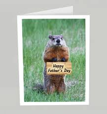 groundhog day cards s day card happy s day groundhog