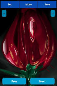 Glass Rose Glass Rose Wallpapers For Android Free Download On Mobomarket