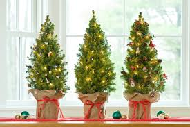 Decorating A Tabletop Christmas Tree by Decorated Spruce Tree With Ornaments Buy From Gardener U0027s Supply