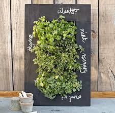 14 best food hacks grow herbs indoors images on pinterest