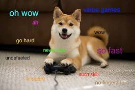 So Doge Meme - doge vidya doge know your meme