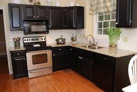 kitchen cabinet paint colors 2016 home design ideas