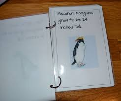from the hive penguin math day preschool style