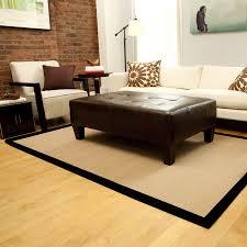 Bound Sisal Rug Sisal Rugs Living Room Decorative