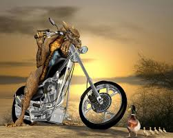 3d funny wallpapers hd wallpapers pulse