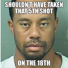 Tiger Woods Memes - 17 best memes of tiger woods arrested for dui sportige