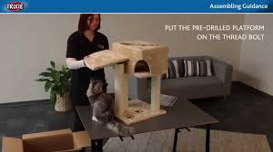 Trixie Cat Hammock by Trixie Cat Tree Assembling Guidance Youtube