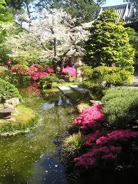 San Francisco Flower Garden by San Francisco Photo Gallery Japanese Tea Garden Tony Quarrington