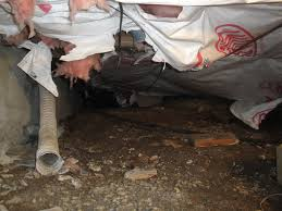 crawl space repair home insulation install contractor syracuse
