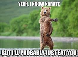 Karate Memes - 22 very funny karate meme pictures