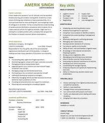Resume For Logistics Executive Professional Vehicle Fleet Manager Templates To Showcase Your