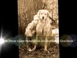 schöne hundesprüche die 10 schönsten hundesprüche