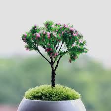 mini tree micro landscape simulation cherry trees diy