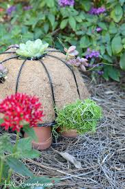 how to make a diy turtle topiary h20bungalow