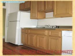 refacing kitchen cabinets cost refacing kitchen cabinets diy video rebelswithacause co
