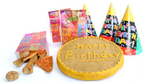dog birthday party dog birthday party package healthy hound bakery treats that are