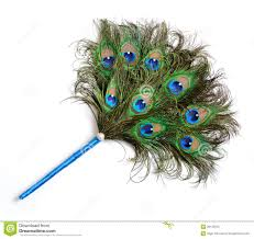 peacock fan peacock feather fan royalty free stock photo image 30125615