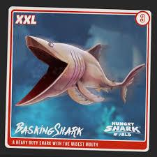 basking shark hungry shark wiki fandom powered by wikia