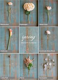 wedding flowers guide guide to wedding flowers white wedding flower guide a guide to