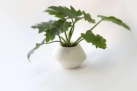 ceramic planter pots 2015 home decorations insight