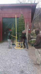 tree farm live trees tunkhannock pa