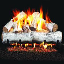 peterson real fyre 18 inch white birch gas log set with vented