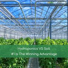 hydroponics vs soil 1 is the winning advantage nov 2017