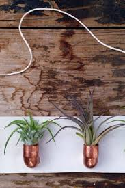 wall plant holders 28 best images about nature lover gifts on pinterest