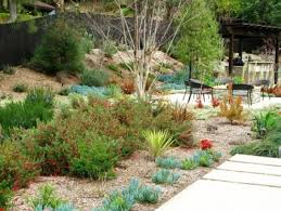 154 best escape with xeriscape images on pinterest landscaping