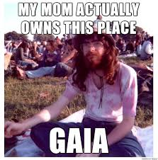Hippie Memes - my shot at creating a new meme for your consideration hippie