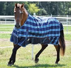Horse Rug Racks For Sale Horse Blankets Sheets And Turnouts Jeffers Pet
