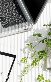Desk Plant Best 25 Desk Plant Ideas On Pinterest Plant Decor Desk And