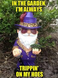 Gnome Meme - spring bling imgflip