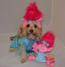 dog candy corn witch costume troll poppy from the trolls movie halloween costumes for dogs