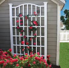 decor garden shed and shingle siding with metal trellis also