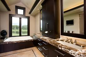 Bathroom Countertop Cabinet Bathroom Counter Cabinets With Contemporary Dark Stained Trim
